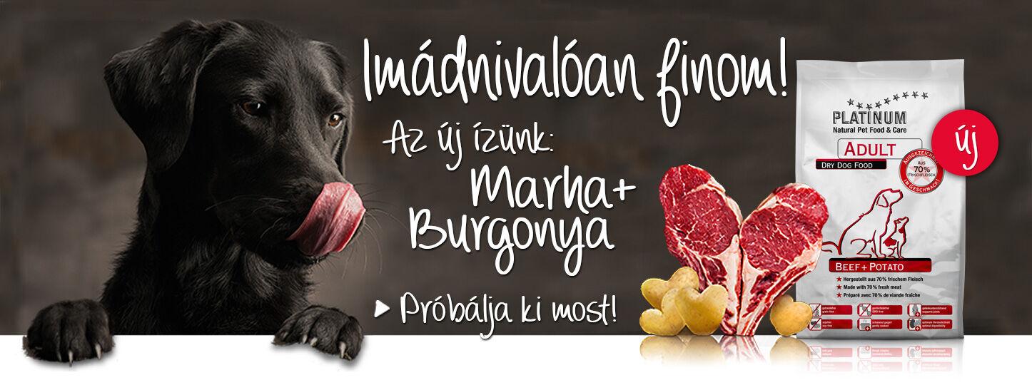 Marha + Burgonya új száraztáp