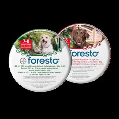 Foresto élősködő elleni nyakörv 8kg alatti kutyáknak