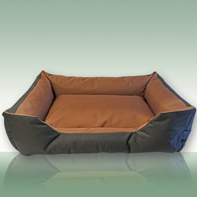 Zbed BrownCoach M kutyaágy